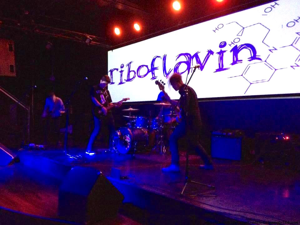 California Indie Band R​iboflavin Talks Music and Marketing